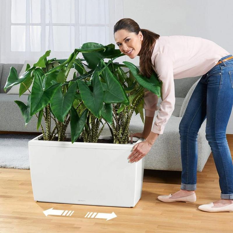 cararo-rectangular-planter-coaster-rollers.jpg