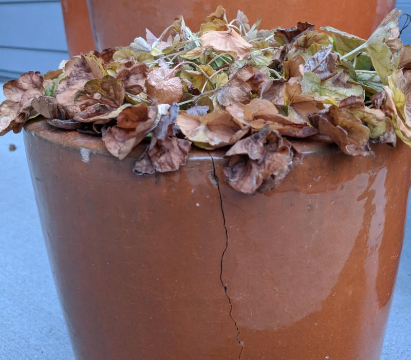 cracked-orange-planter-from-freezing.jpg