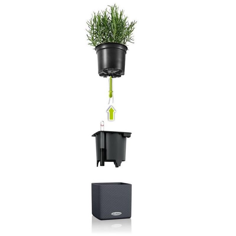 cube-color-planter-insert.jpg