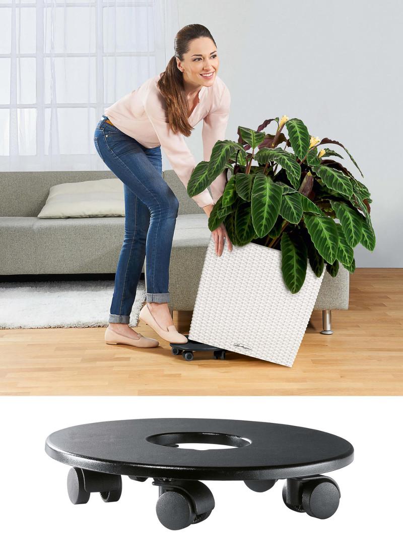cube-cottage-planter-coaster.jpg