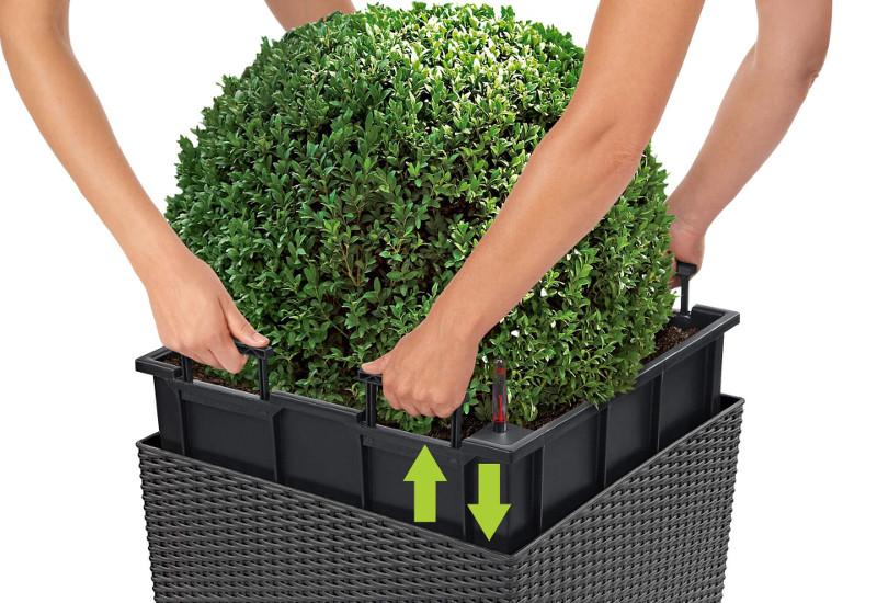 cube-cottage-planter-liner.jpg