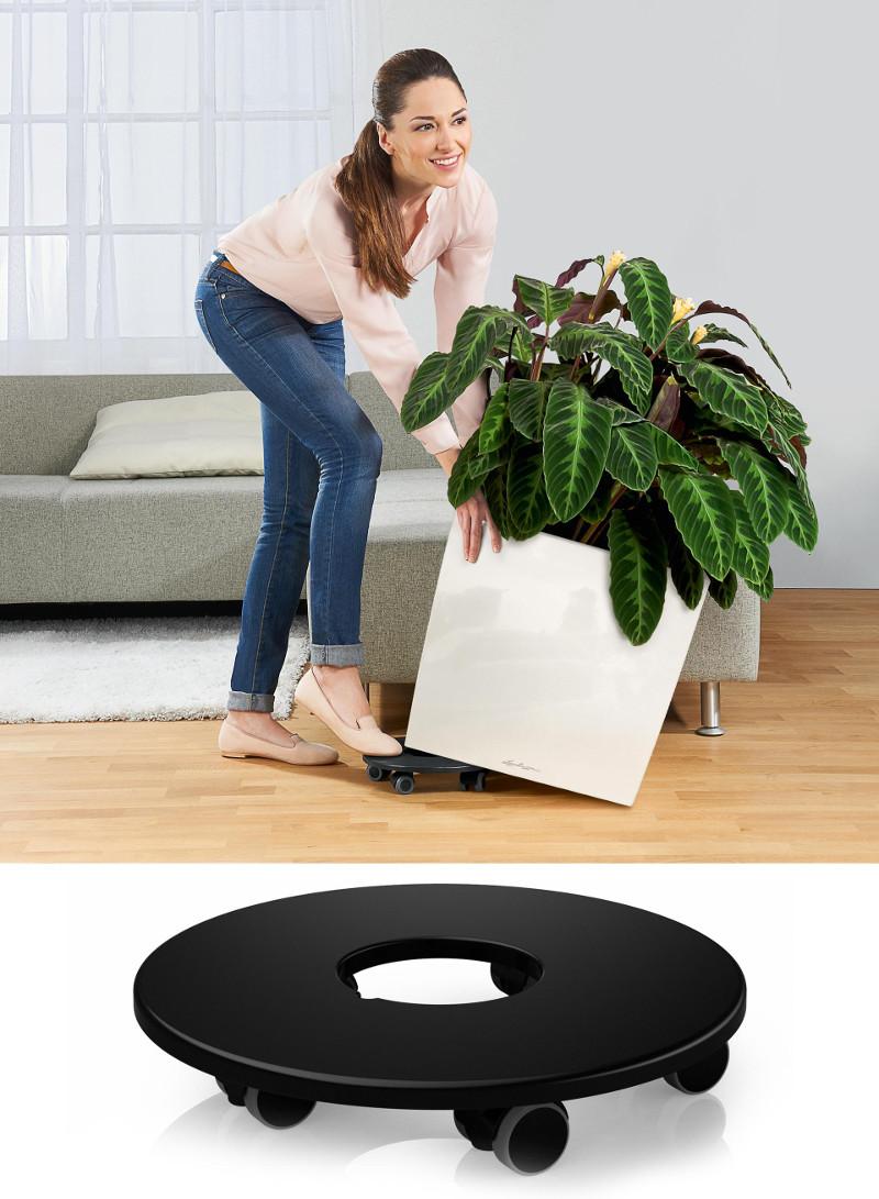cube-planter-coaster.jpg