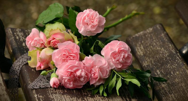 cut-roses.jpg