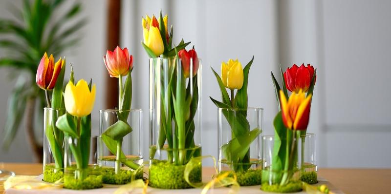 cut-tulip-flowers-in-vases.jpg