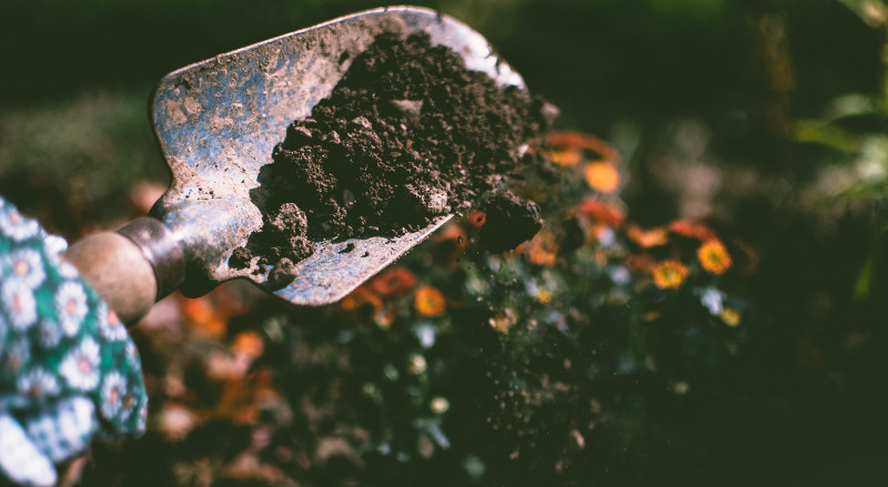 gardening-tools-for-planting-lilacs-in-the-dirt.jpg