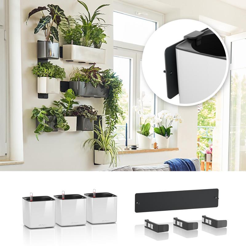 green-wall-glossy-hanging-planter-green-wall-home-kit.jpg