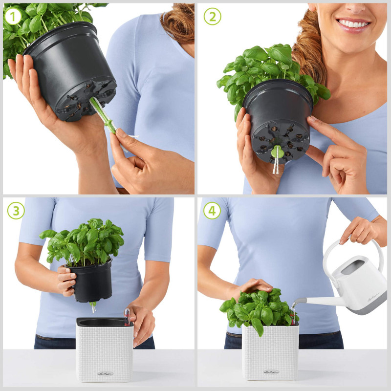 how-to-use-a-cube-color-planter-steps.jpg