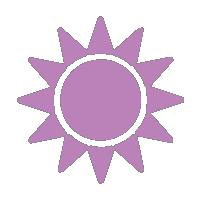 hydrangeas for full sun