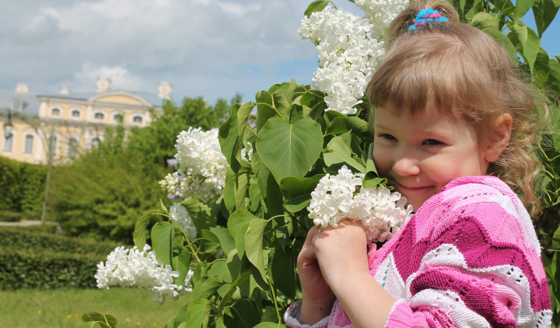 little-girl-with-lilacs.jpg