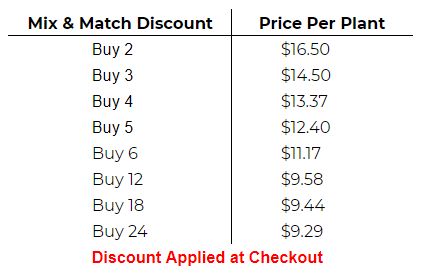 Mix and Match Discount
