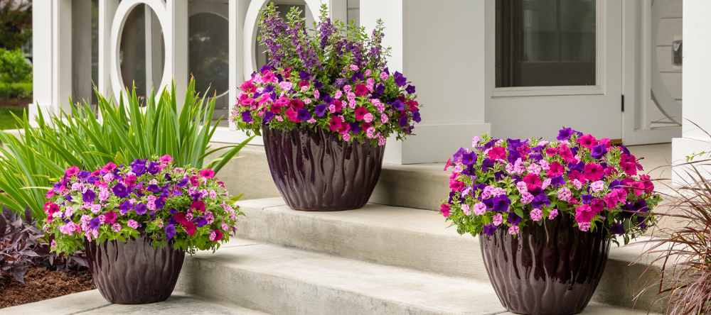 pre-planned-annual-planters.jpg