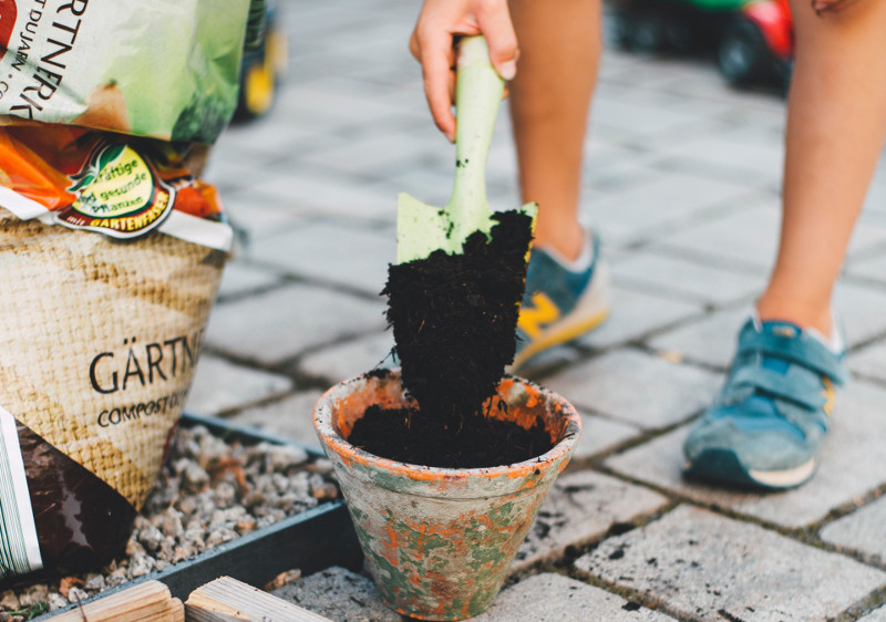 putting-potting-soil-in-planter-for-lilac-plant.jpg
