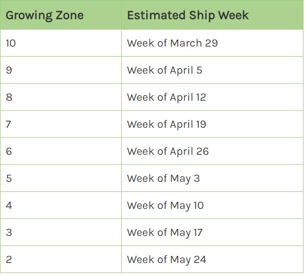 shipping-chart.png