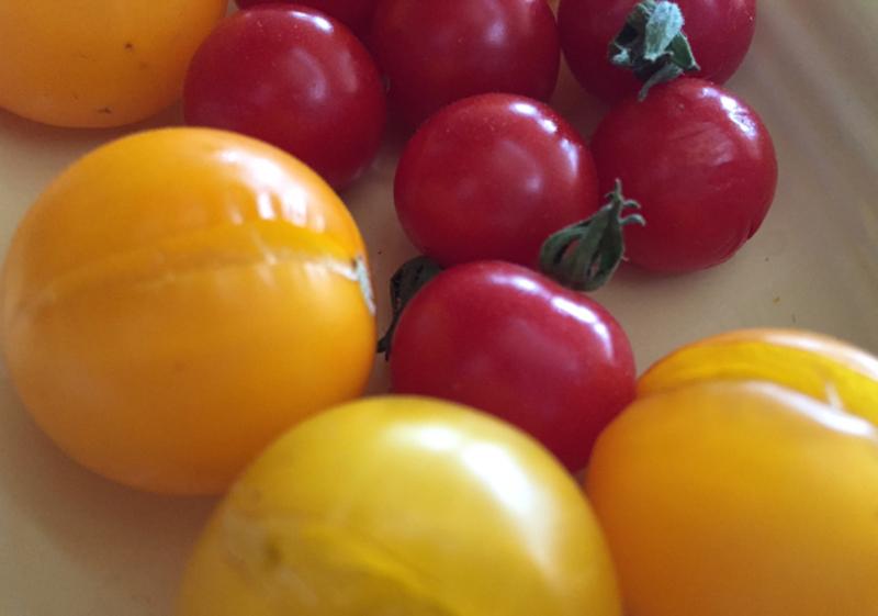 split-tomatoes.jpg
