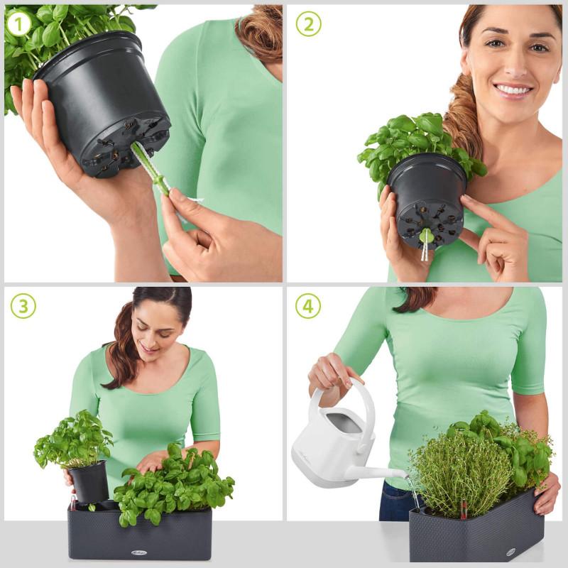 using-a-cube-color-triple-rectangular-planter.jpg