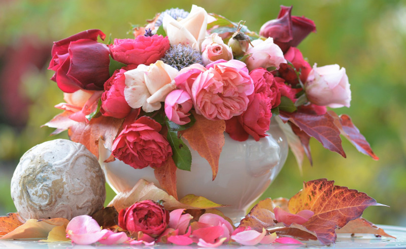 vase-with-different-types-of-rose-flowers.jpg