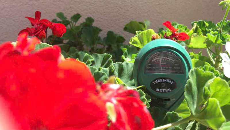 water-meter-in-the-garden.jpg