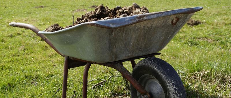 wheelbarrow-with-old-potting-soil.jpg