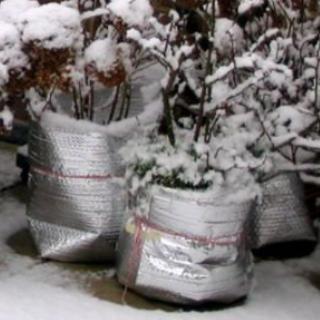 Winterizing Garden Planters
