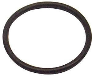6000-001 Sundance Spas Tailpiece O-Ring