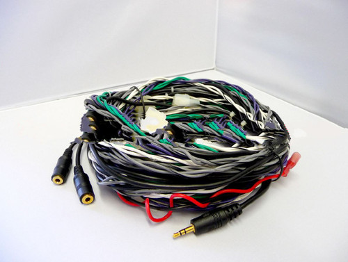 20197-001 Main Stereo Wiring Harness