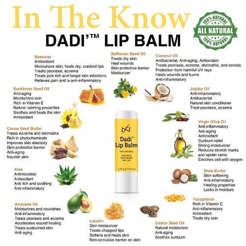 Famous Names Dadi Lip Balm 12pc Box