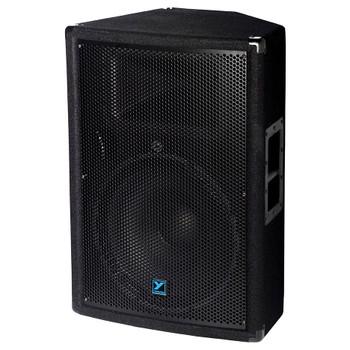 Yorkville YX15P 300 watts 15 inch 2 way powered speaker angled view