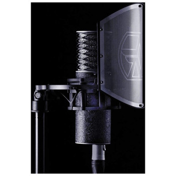 aston-spirit-black-bundle-switchable-pattern-studio-condenser-mic-with-shock-mount-and-pop-filter-mounted-view