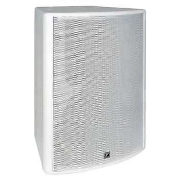 Yorkville C2285 Coliseum 300 watt 12 inch speaker angled view