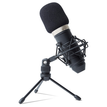 MPM-1000  Mic on stand with windscreen