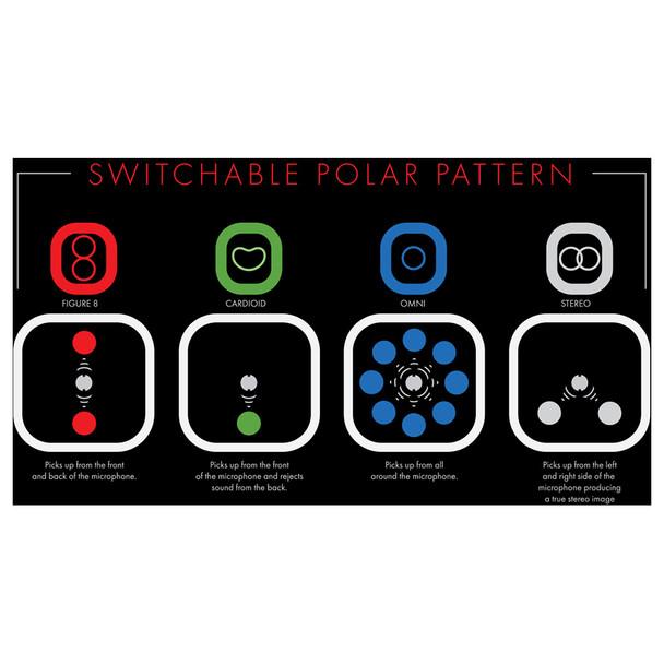 Switchable polar pattern