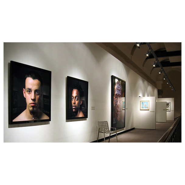 art gallery with artwork illuminated by EVE Track Fresnel