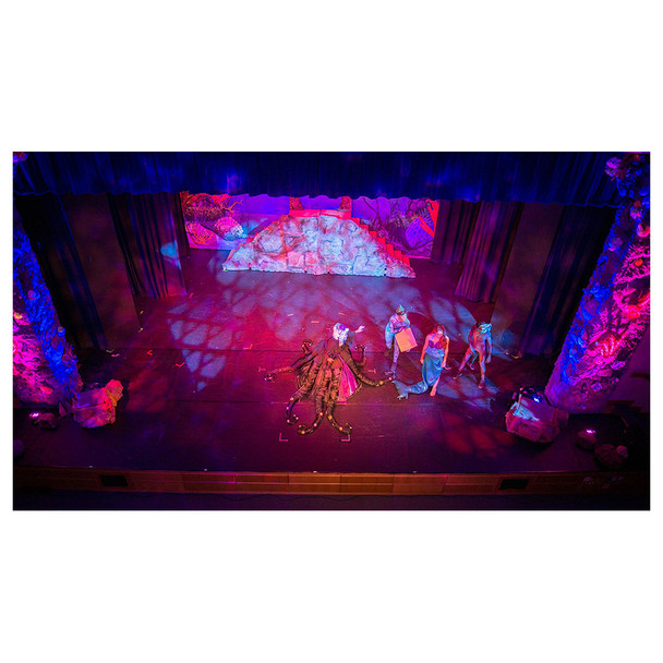 top view of stage with actors on it illuminated by Freedom Par Quad-4 lights