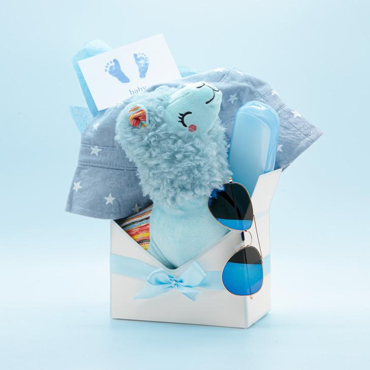 Blue Baby Boy 4 Pcs Lama Gift Set