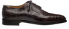 Alligator Belly Shoes Chocolate Brown Mens Wingtip by Ferrini 3673/133