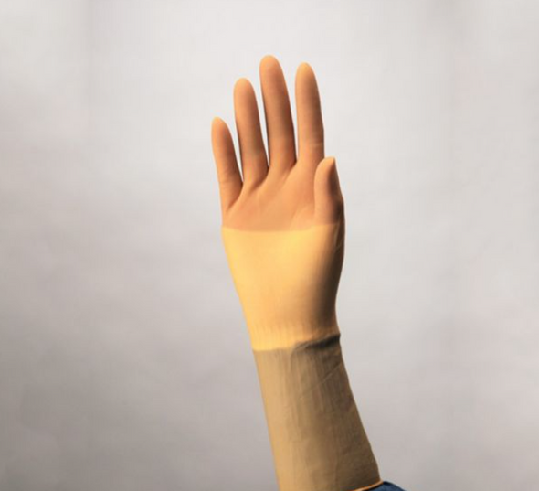 Protexis Latex Surgical Gloves