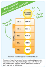 What is the difference between Watts and Lumens?