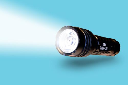 (10 Pack) Mini LED Flashlight