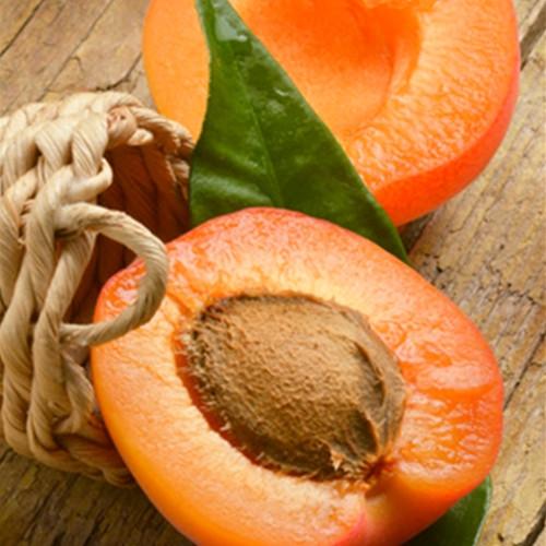 Apricot (TFA)