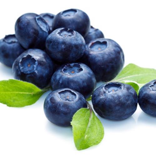 Blueberry Extra (TFA)