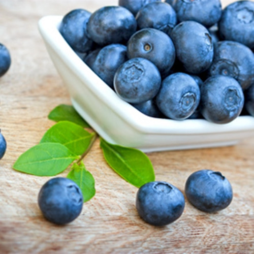 Blueberry Wild (TFA)