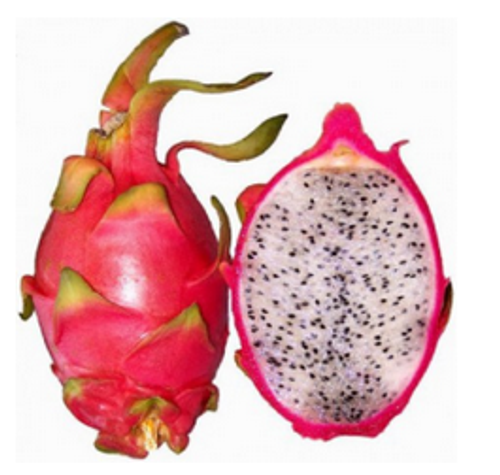 Dragonfruit (FW)
