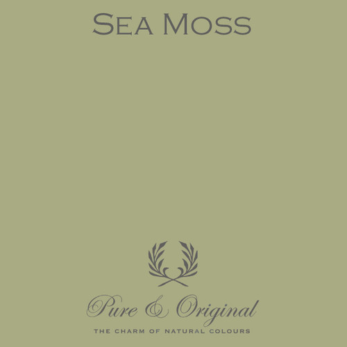 Pure & Original Classico Chalk Based Paint in Sea Moss (Also Available in Fresco Lime Paint and Marrakech Wall Paint)