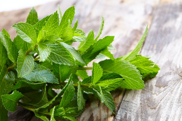 Peppermint leafs