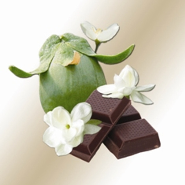 Chocolate - Jasmine Scented Jojoba