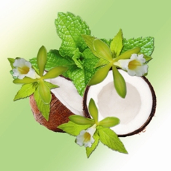 Vanilla - Peppermint Scented Fractionated Coconut