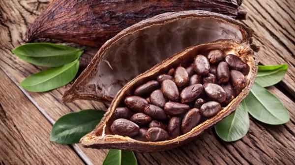Cocoa Non-Pourable