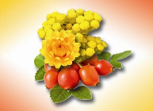 Helichrysum 10% In Rose Hip Seed