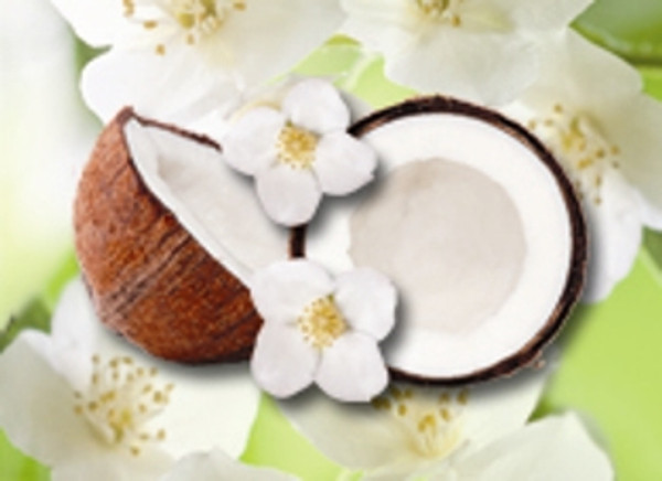 Jasmine Sambac 10% in Fractionated Coconut
