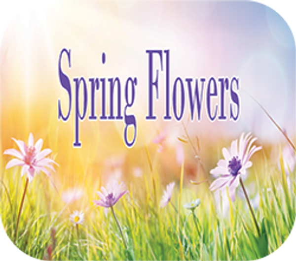 Spring Flowers Pure EO Blend